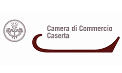 logo_camera_commercio_caserta_2