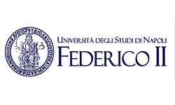 logo_federico_secondo_napoli
